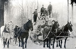 Horses pulling stacked logs and lumberjacks